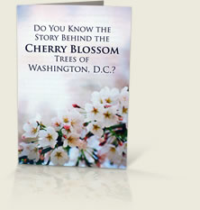 Cherry Blossoms Tract